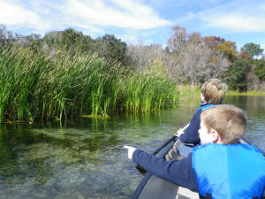 Canoeing at Salt Springs Recreation Area
